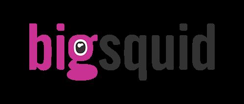 bigsquid is a partner