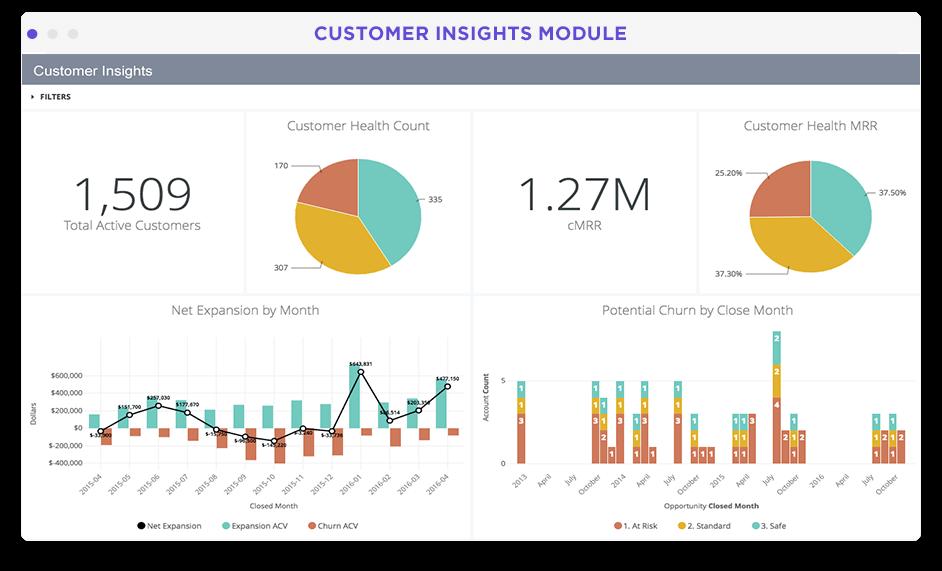 SaaS customer health dashboard in Looker screenshot